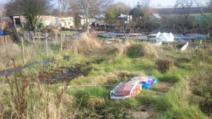 The Apocalypse Allotment on Judgement Day