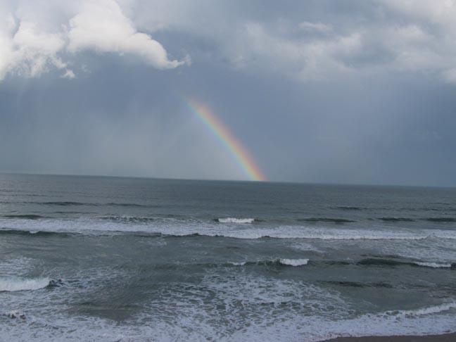 Rainbow-Jan 5, x2