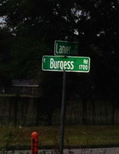 Burgess 1x300