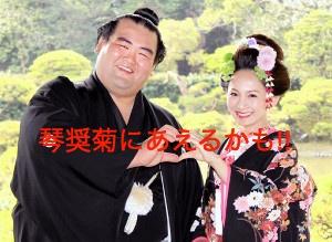今、柳川で琴奨菊にあえるかもしれない!!
