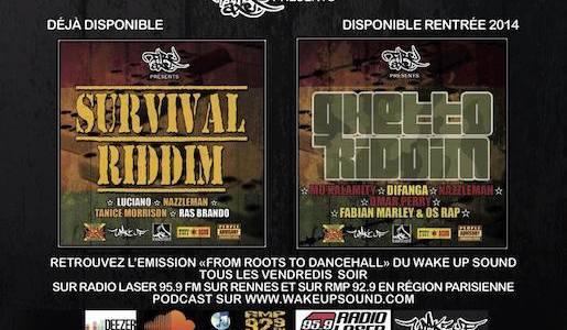 Survival Riddim & Ghetto Riddim (Fire Axe Band)