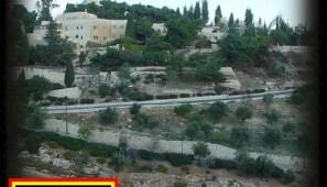 ZionRiddim