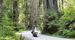 Ride-through-Rockefeller1