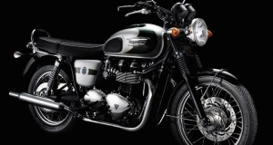 110th Anniversary Bonneville