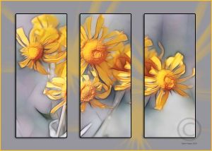 yellow-flower-3-panelweb.jpg