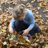 If You Go Down to the Woods Today - 10 Woodland Activities for Children