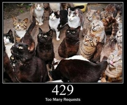 429 Too Many Requests  The user has sent too many requests in a given amount of time.