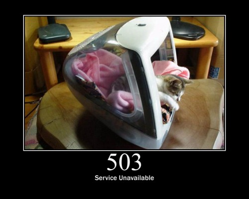 503 Service Unavailable  The server is currently unavailable.
