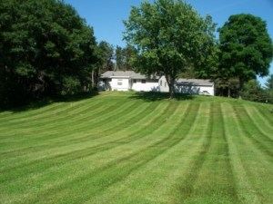 lawn mowing west lakeland mn