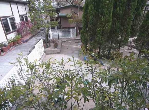 幼稚園 カメラ3