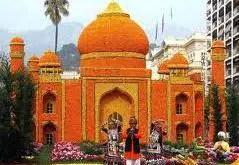 Orange festival - Tajmahal