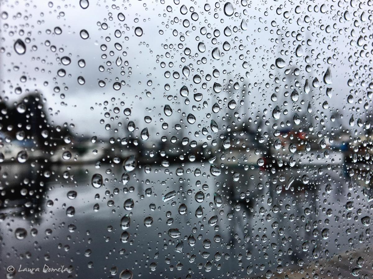 thomasbasin_rain-1348