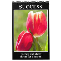 2014 Discouragement & Demotivational Humor Calendar