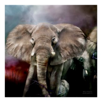 Africa - Protection Art Poster/Print