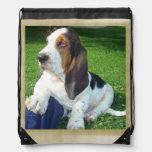 Basset puppy backpack