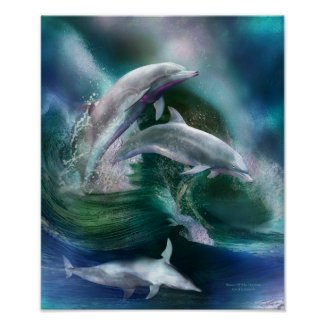 Dance Of The Dolphins Art Poster/Print
