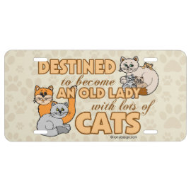 Future Crazy Cat Lady Funny Saying Design License Plate