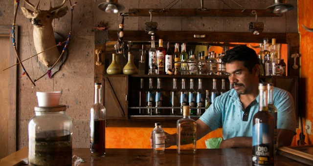 Pot, Peyote, and Snakes: the Rise of Northern Mexico's Best Drink