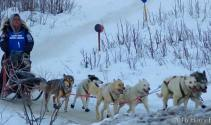 Race Recap: 2016 Earl Norris Memorial Sled Dog Race