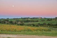 Full moon at Roberts' Roost