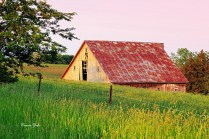 """Old Barn"" Camp Creek Road Savanna 1"
