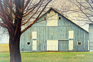 """Old Barn"" Mount Carroll 3"