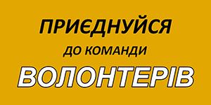 volontery300