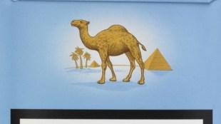 Rob Scholte - Camel Blue