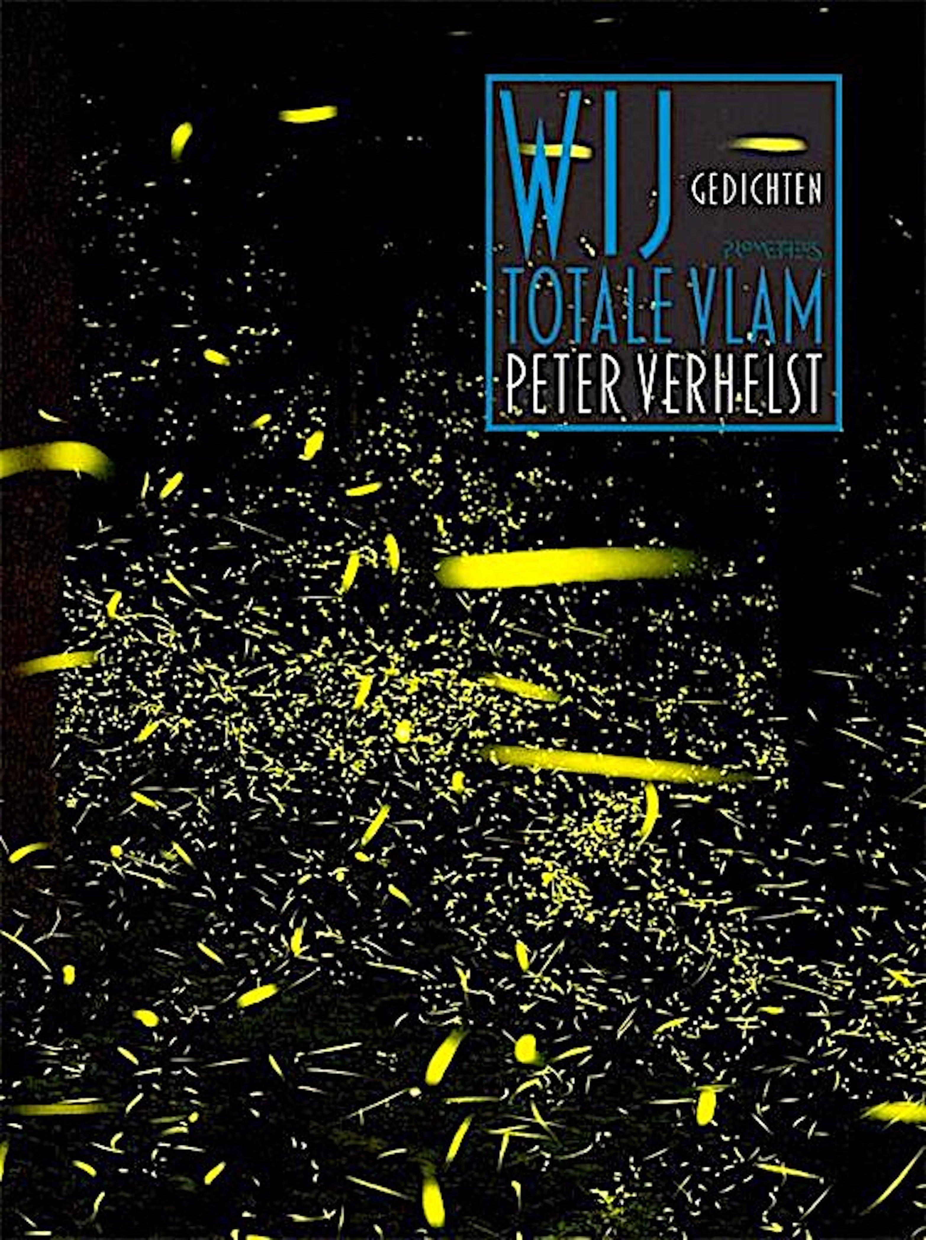 Peter Verhelst – Wij totale vlam