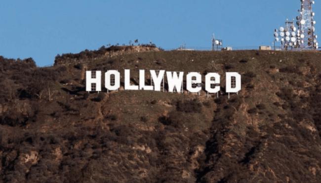 Hollyweed (foto Amerika Only)