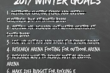 Winter Goal Review