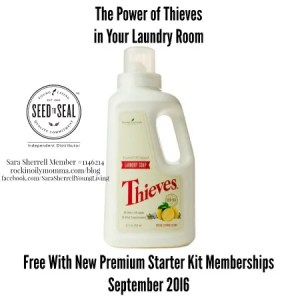 ThievesLaundry, washer, dryer, laundry soap, Thieves, Thieves Laundry Soap