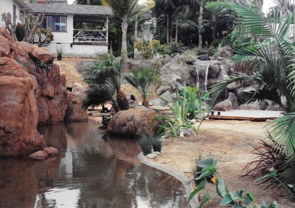 swimming pools fish ponds (48)