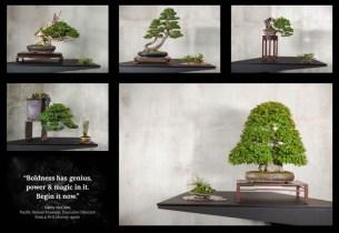 Courtesy of Jonas Dupuich - Gallery