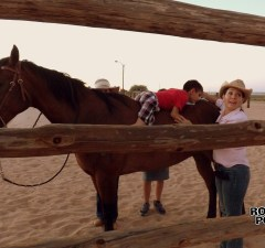 equine therapy (7)