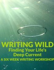 WritingWild6Week