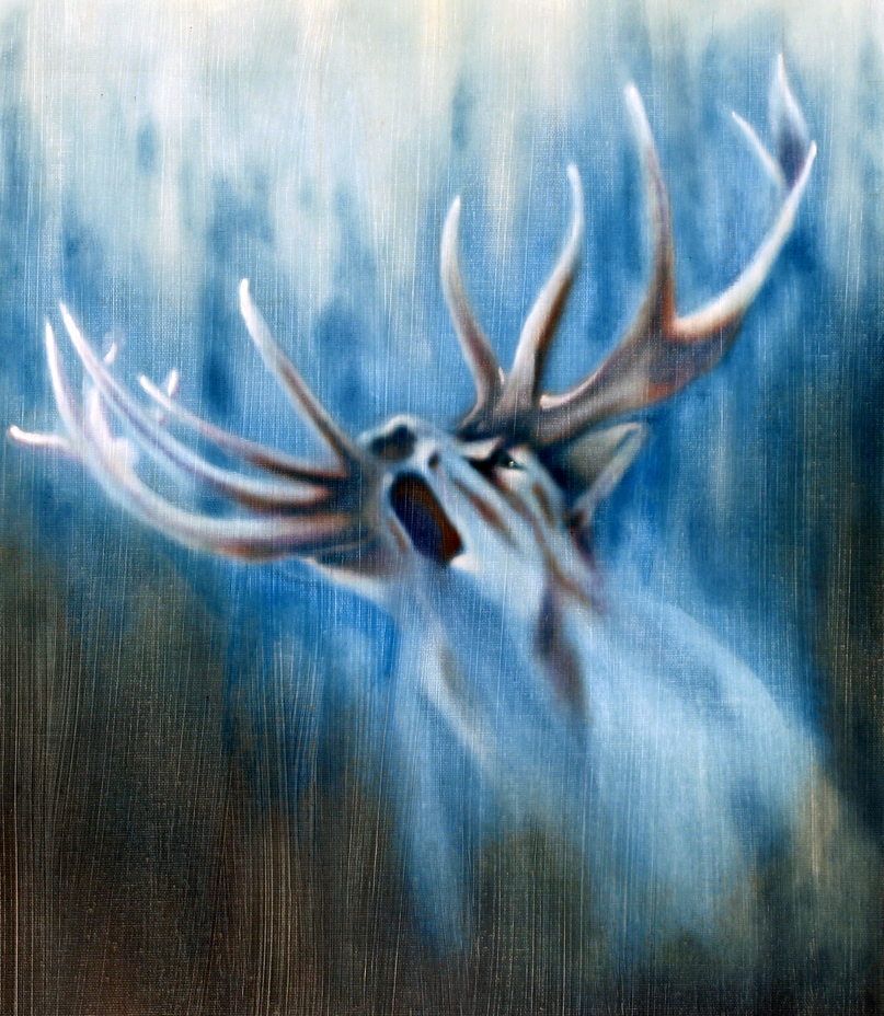 White Stag, Invitation to the Quest, celtic symbolism, pagan,