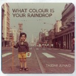 What Colour is your raindrop- album cover