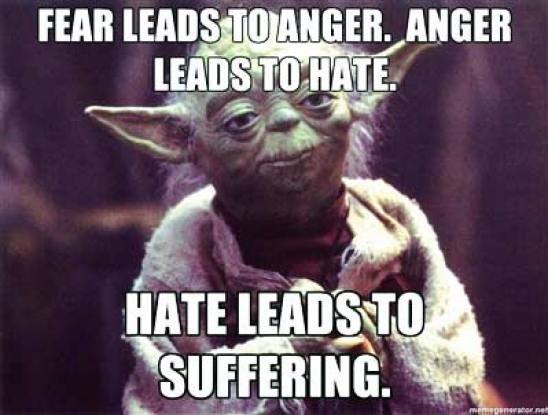 fear-leads-to-anger-anger-leads-to-hate