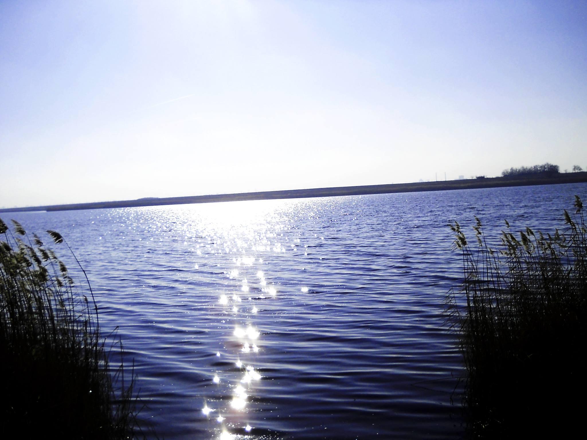 """""""Turist în țara mea"""": """"Ingredientul secret cu puteri tămăduitoare"""" din apa Lacului Amara. Savantul Petru Poni l-a descoperit"""
