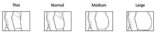 Stomach Description