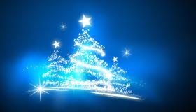Magical xmas trees on blue