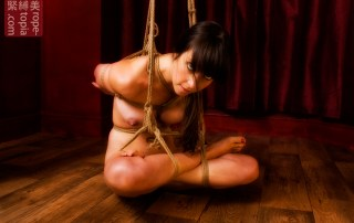 Low shibari suspension bondage
