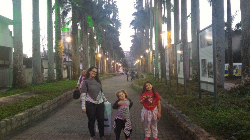 """Alameda das Palmeiras, """"primas"""" das palmeiras do Rio de Janeiro"""