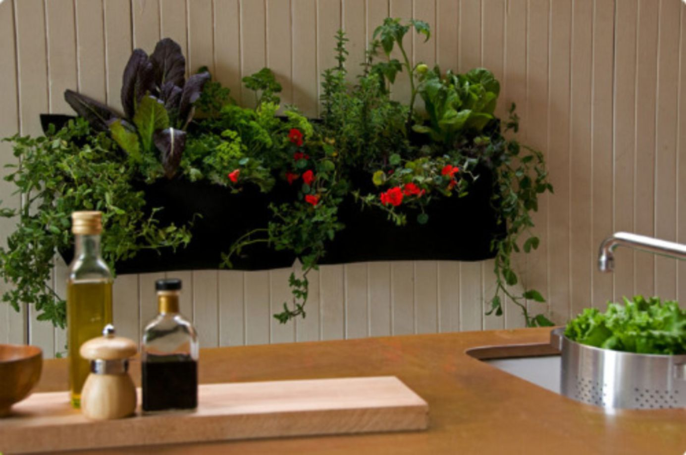 Fullsize Of Indoor Wall Garden Ideas