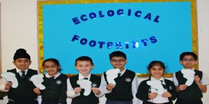 How Big Is Your Ecological Footprint?