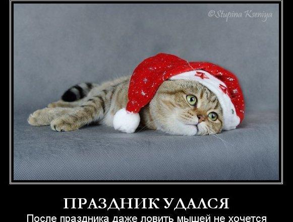Фото: Stupina Kseniya