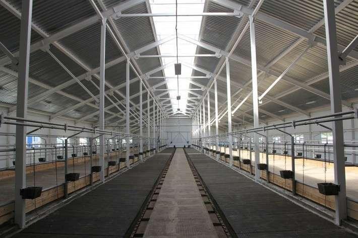 5. В Оренбургской области открылся новый молочный комплекс политика, сделай сам, факты