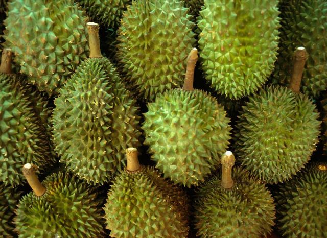 3. And this ball shaped fruit with thorns, which can reach a diameter of 30 cm, and weighs less than 5 kg, called durian. In South-East Asia, you can find more than three dozen varieties of durian, edible but only 9 of them, and they smell a little like the fact that you can eat. It was because of the smell, like a mixture of turpentine and rotten onions and cheese, in some countries it is forbidden to appear with the durian fruit in public. But, despite the smell, the yellow-red fruit pulp is very pleasant to the taste and resembles a mixture of cream, banana and egg yolk. Durian contains high amounts of vitamins and minerals, is an aphrodisiac, but is contraindicated in hypertensive patients, because it increases the blood pressure.