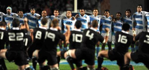 haka-pumas-all-blacks